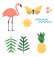 flamingo sun butterfly flower palm leaf ananas vector image