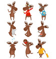 flat set of funny brown moose elk in vector image