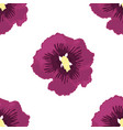 seamless of purple hibiscu vector image vector image