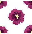 seamless of purple hibiscu vector image