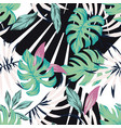 abstract tropical pattern from leaves black white vector image vector image
