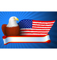 american eagle flag wing vector image vector image