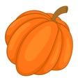 Autumn pumpkin vegetable icon cartoon style vector image vector image