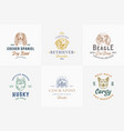 dog breeds badges or logo templates collection vector image