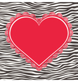 Greeting card with zebra texture and heart vector image