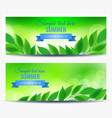 horizontal flyers with green leaves vector image vector image
