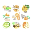 Natural Citrus Juice Promo Signs Colorful Set vector image vector image