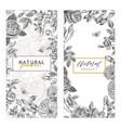 vintage floral cards set frame with engraving vector image vector image