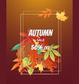 autumn sale with leaf poster vector image vector image