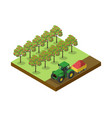 crop harvesting in orchard isometric 3d element vector image vector image