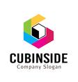 Cubinside Design vector image vector image
