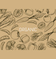 healthy organic eco vegetarian food logo design vector image