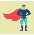 Hero Man vector image vector image