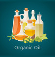 organic oil from vegetables berries and fruits vector image vector image
