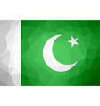 pakistan polygon flag vector image vector image