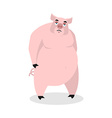 Sad pig Big fat boar melancholy sorrowful hog vector image vector image
