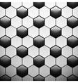 texture soccer ball vector image vector image