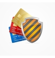 Credit Card Safety Concept vector image