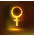 Women sign symbol glowing background vector image vector image