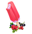 Berry popsicle Ice-cream Summer flavor vector image