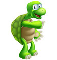 cartoon tortoise or turtle pointing vector image vector image