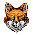 fox head hand drawn style vector image vector image