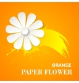Greeting card with paper flower vector image vector image
