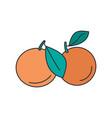 mandarin icon cartoon style vector image