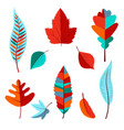 set from autumn colored leaves vector image