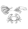 sketch lobster crab squid set isolated vector image