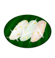 Thai Mung Bean Rice-Crepe on Banana Leaf Container vector image vector image