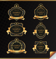 Vintage set of black frame label with gold element vector image