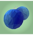 Polygonal Blueberry vector image