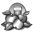 aplle juice black white vector image vector image