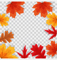autumn natural leaves on transparent background vector image vector image