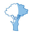 cartoon tree plant natural botanical ecology vector image vector image