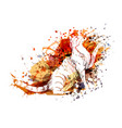 color of a cat vector image