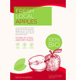 fresh local fruits label template abstract vector image