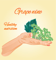 Grape wine in the palm of healthy nutrition vector image