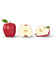 red whole apple and a half apple fresh fruit vector image