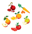 Set of fruits vegetables vector image vector image