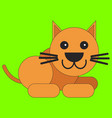 cat in cartoon flat style vector image vector image
