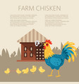 farm chicken characters singing rooster banner vector image vector image