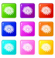gerber flower icons set 9 color collection vector image vector image