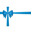 gift bow tie vector image vector image