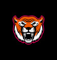 head angry tiger mascot design element for vector image