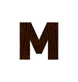 logo letter m wood texture vector image vector image