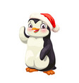 penguin animal cartoon antarctic bird in red hat vector image vector image