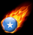 Round glossy icon of somalia vector image vector image
