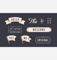 set vintage graphic design elements linear vector image